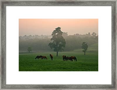 A Kentucky Morning. Framed Print by Ulrich Burkhalter