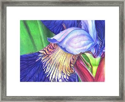 A Kiss From Iris Framed Print