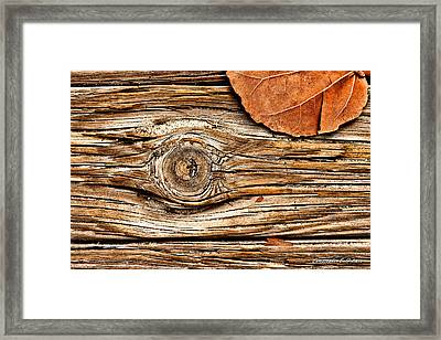A Knot Framed Print by Christopher Holmes