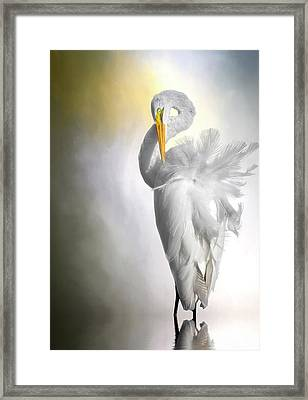 A Lady Needs Her Privacy Framed Print