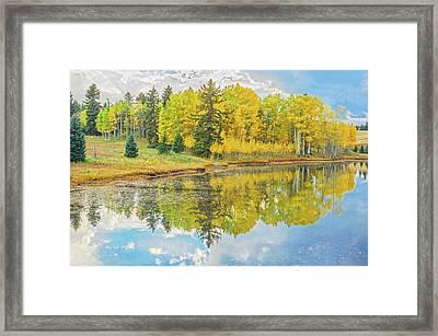 A Lakeside Willowwacks  Framed Print