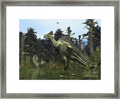 A Lambeosaurus Rears Onto Its Hind Legs Framed Print by Walter Myers
