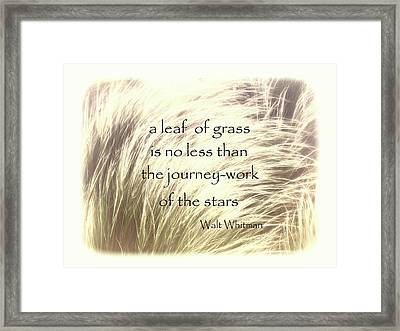 A Leaf Of Grass Walt Whitman Quote Framed Print by Ann Powell