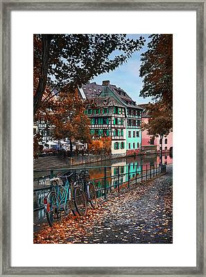 A Leafy Lane In Strasbourg  Framed Print by Carol Japp