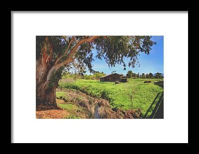 Livermore Framed Prints