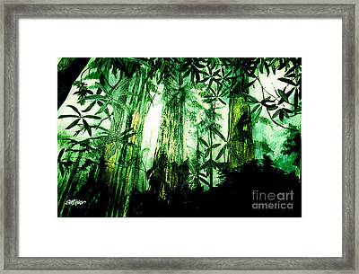 A Light In The Forest Framed Print by Seth Weaver
