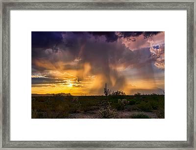 A Light Morning Rain  Framed Print