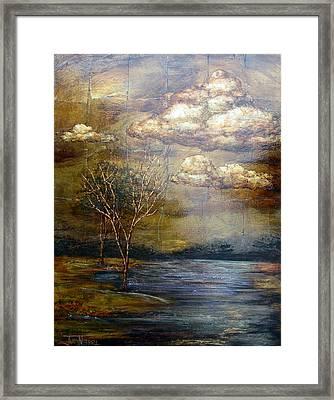 A Light Sheen Framed Print by Judy Merrell