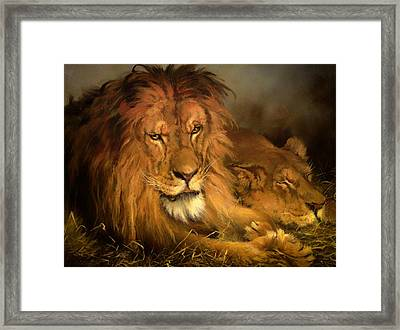 A Lion And A Lioness Framed Print by Mountain Dreams