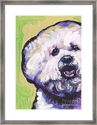 A Little Bichon Framed Print by Lea S