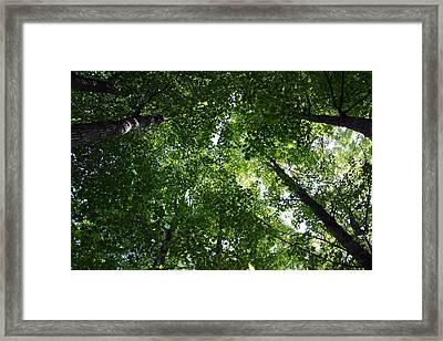 Framed Print featuring the photograph A Little Bit Of Heaven by Joanne Coyle