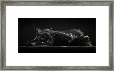 A Little Bit Tired Framed Print