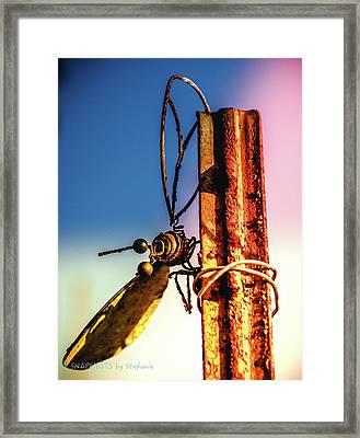A Little Rusty Framed Print by Stefanie Silva