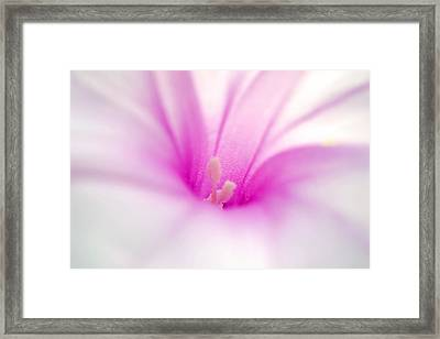 A Living Poem Framed Print