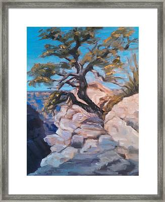 A Lone Tree Framed Print