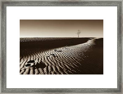 A Lone Tree On A Sand Dune  - Sepia - Monahans, Texas Framed Print by Ellie Teramoto