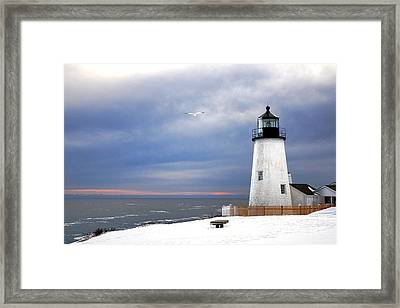 A Lonely Seagull Was Flying Over The Pemaquid Point Lighthouse Framed Print by Olivier Le Queinec