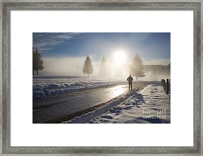 A Lonely Winter Framed Print by Gabriela Insuratelu