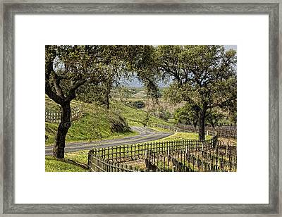 A Long And Winding Road Framed Print