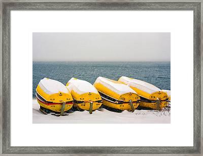 A Long Winter's Nap Framed Print by Todd Klassy