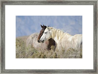 A Look Into The Future  Framed Print by Nicole Markmann Nelson