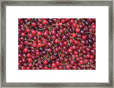 A Lotta Cherries Framed Print by Tim Gainey