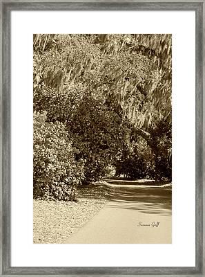 A Lowcountry Springtime Framed Print
