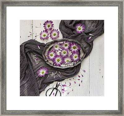 Framed Print featuring the photograph A Magical Moment by Kim Hojnacki