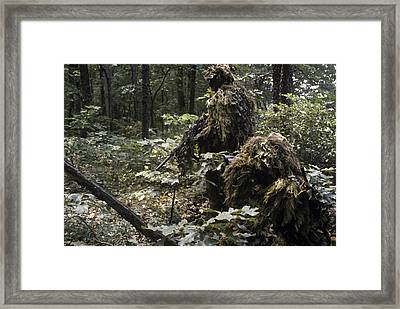 A Marine Sniper Team Wearing Camouflage Framed Print by Stocktrek Images