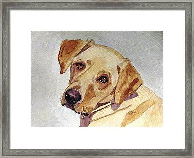 A Mellow Yellow Framed Print by Angela Davies