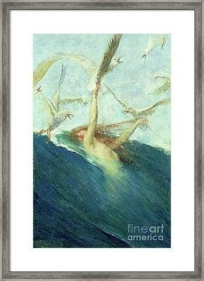 A Mermaid Being Mobbed By Seagulls Framed Print by Giovanni Segantini