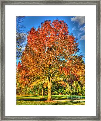 A Michigan Fall-2 Framed Print by Robert Pearson