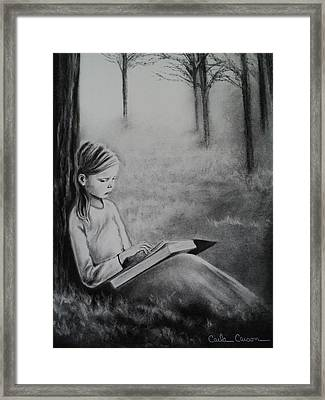 A Mid Summers Tale Framed Print
