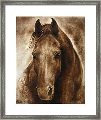 A Misty Touch Of A Horse So Gentle Framed Print by Paula Collewijn -  The Art of Horses