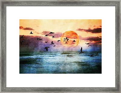 A Moment At Sea Framed Print