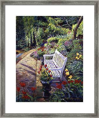 A Moment Of Peace Framed Print by David Lloyd Glover
