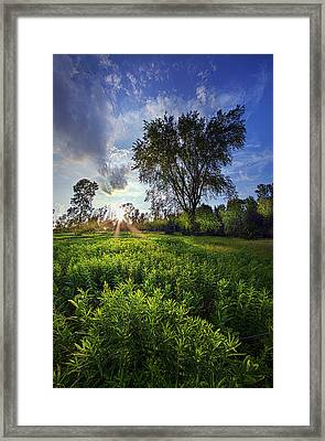 A Moment Or Two Framed Print by Phil Koch