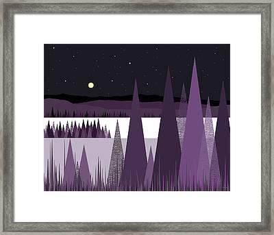 A Moonlit Winter Night II Framed Print