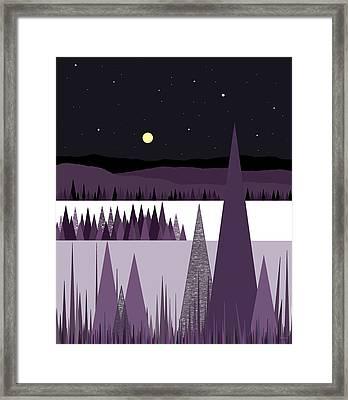 A Moonlit Winter Night Framed Print