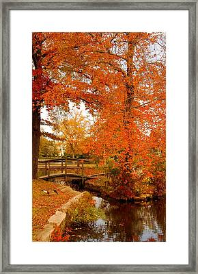 A Morning In Autumn - Lake Carasaljo Framed Print by Angie Tirado
