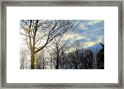 A Morning Sun Framed Print