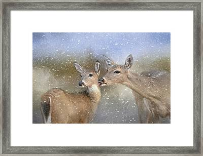 A Mother's Love Deer Art Framed Print by Jai Johnson