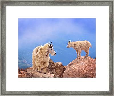 A Mother's Smile Framed Print by David Scarbrough