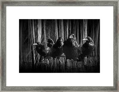 A Murder Of Crows Among The Forest Trees Framed Print by Randall Nyhof
