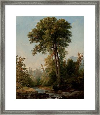 A Natural Monarch Framed Print by Asher Brown Durand