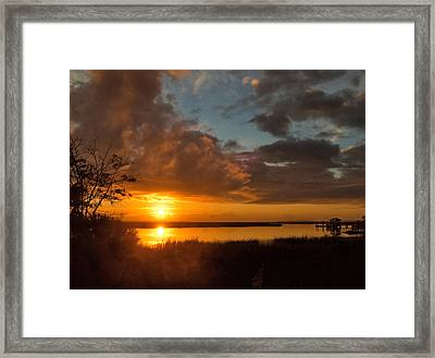 Framed Print featuring the photograph A New Beginning by Laura Ragland