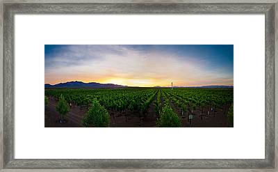 A New Day In The Field Framed Print