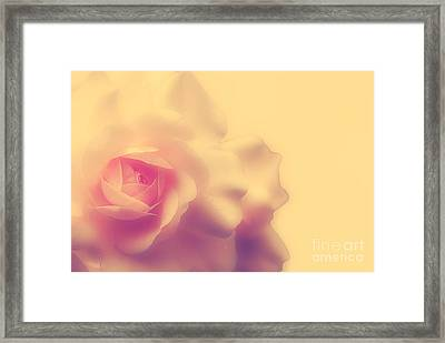 A New Day Framed Print by Lois Bryan