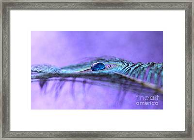 A New Hope Framed Print by Krissy Katsimbras