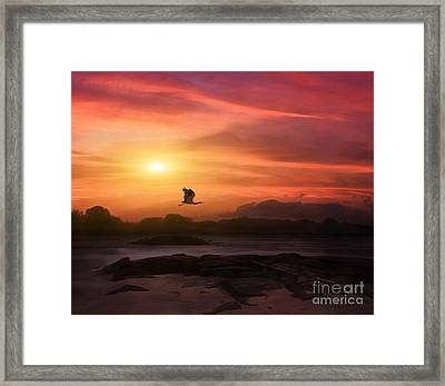 A New Sunset Framed Print